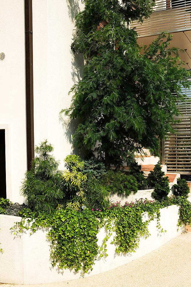Giardino Privato 16