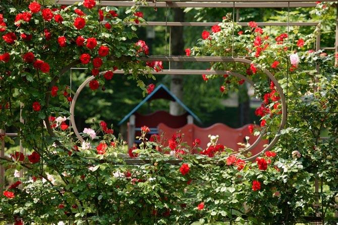 Giardini Riabilitativi 06