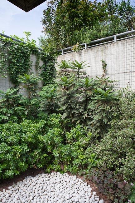 Giardino Aziendale 06