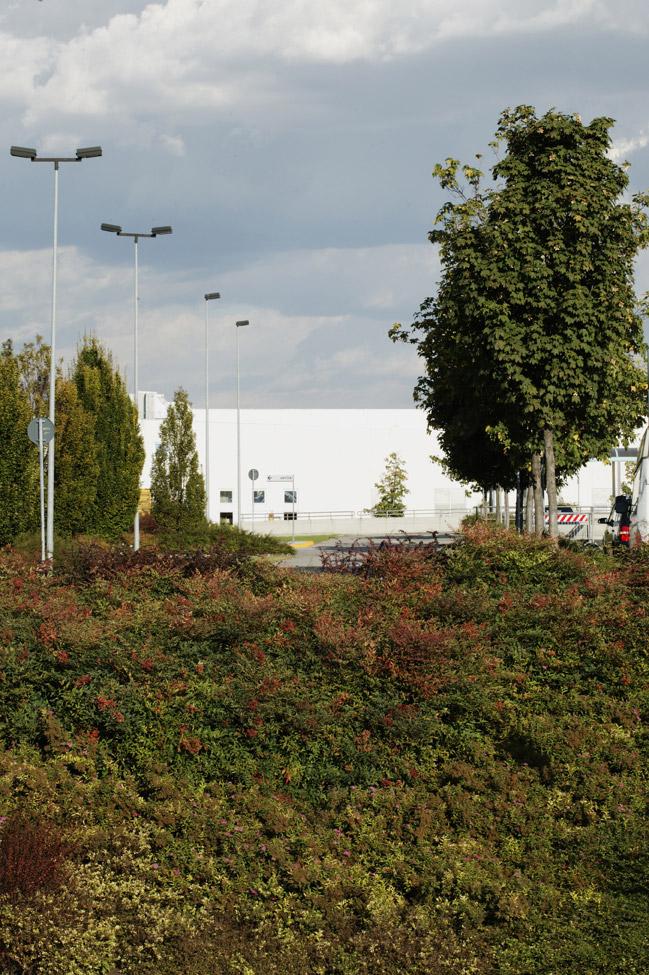 Giardino Aziendale 09