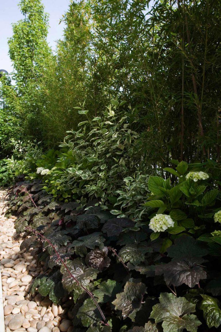 Giardino Privato 15