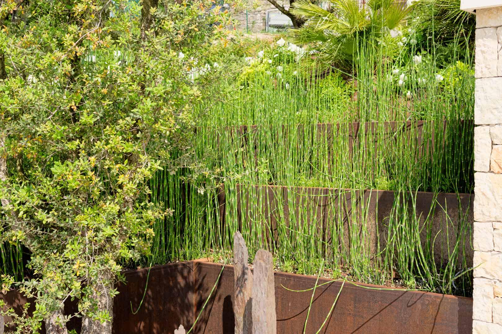 Giardino privato 24