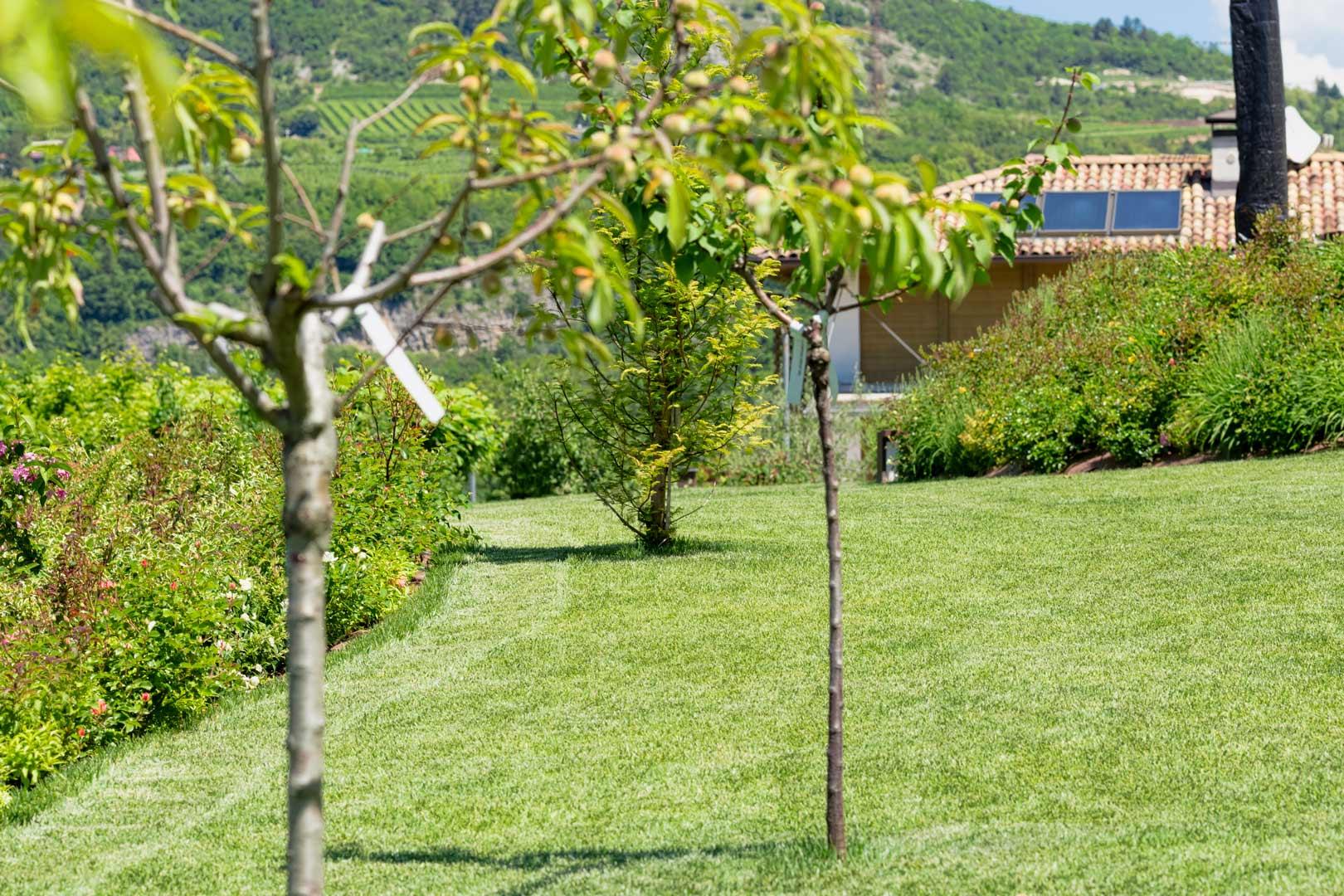 Giardino privato 25